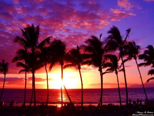 Maui (via)