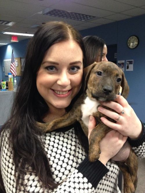 Puppy snuggles at work! A definitive highlight!
